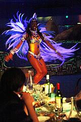 Terra do Samba